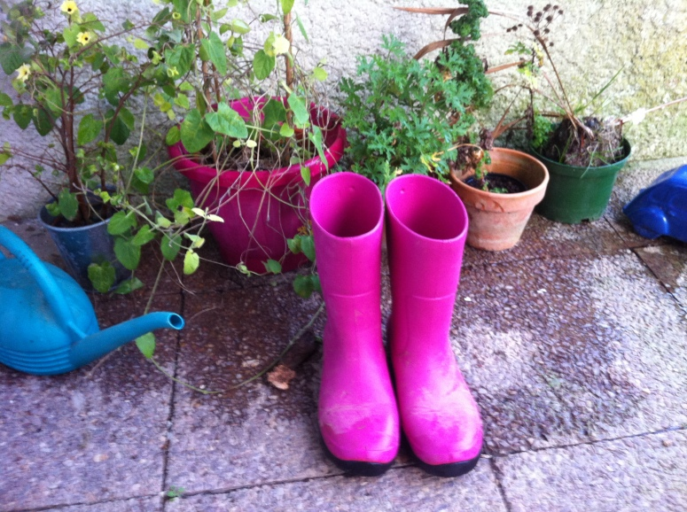 Pink Wellies